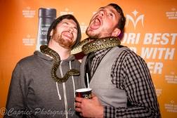 snakes, animal entertainment, midori promotions