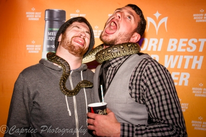 snakes, animal entertainment, midori promotions