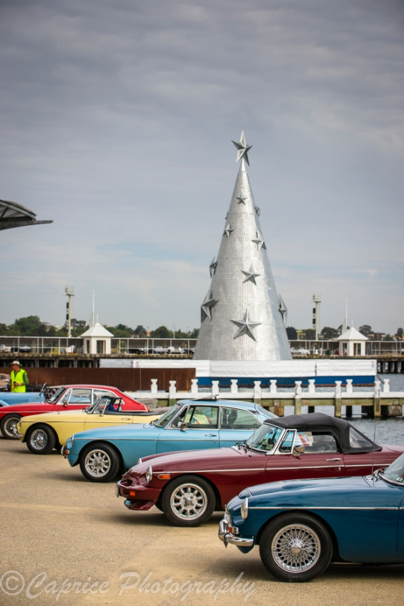 geelongs christmas tree, mgs, MGs, sports cars